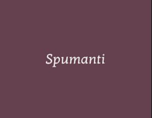 Immagine per la categoria Spumanti