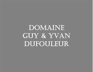 Immagine per la categoria Domaine Guy & Yvan Dufouleur